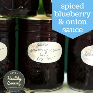 Spiced Blueberry and Onion Sauce