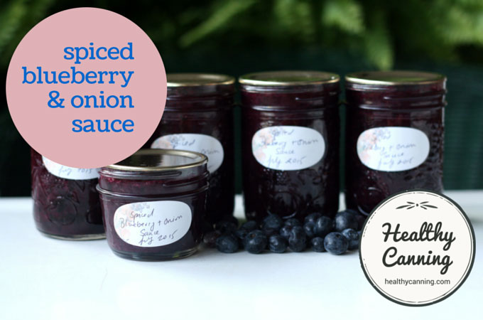 spiced blueberry & onion sauce 005