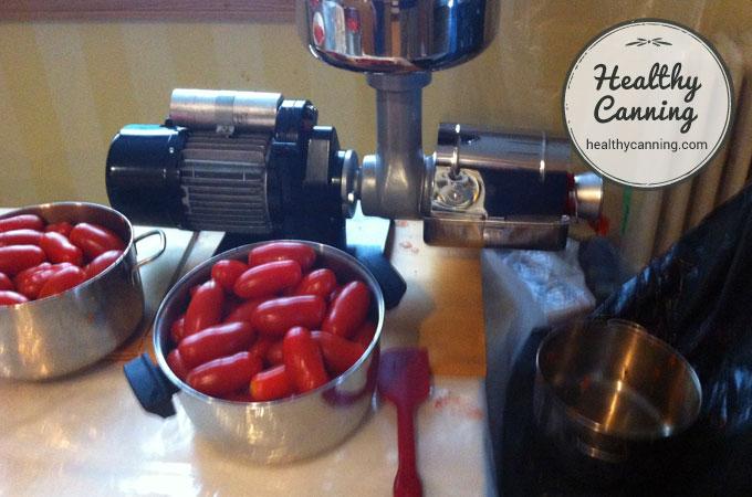 tomato-peeling-machine-001